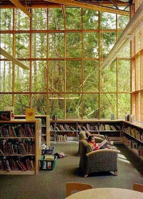 biblioteca con vetrate sul bosco