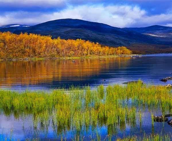Paesaggio finlandese