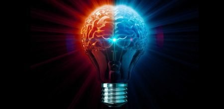 lampadina con due emisferi cerebrali