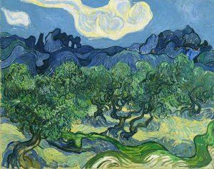 Vincent Van Gogh - Ulivi con le Alpille sullo sfondo