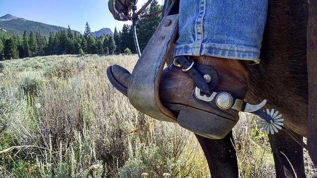 Cavallo e speroni, la prateria: in un romanzo western sono d'obbligo.