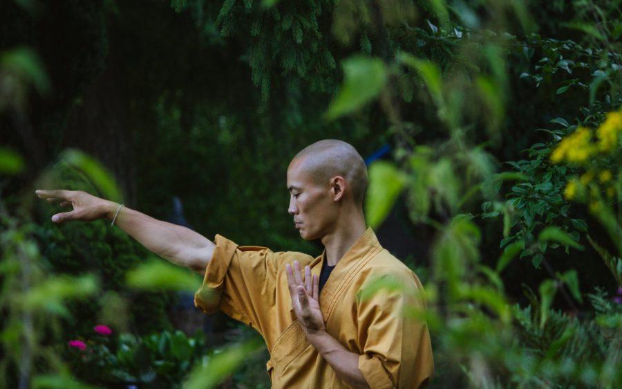 Il Meastro di arti marziali sa fare buon uso della saggezza degli opposti.